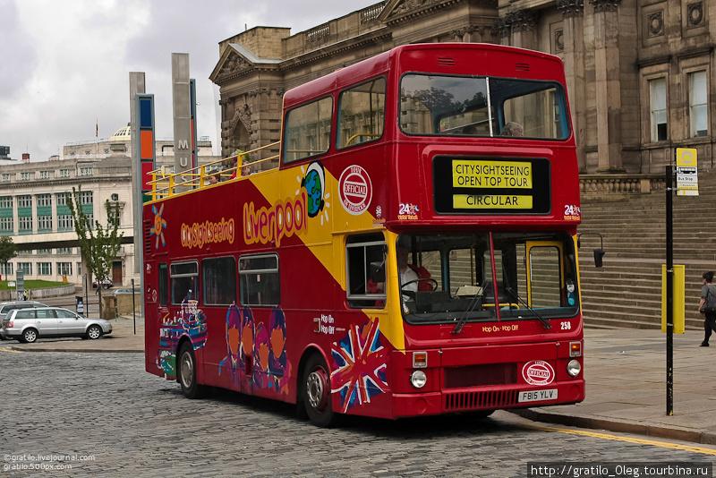 автобус, на котором мы ездили