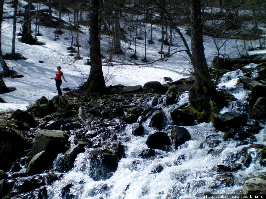 В теплый весенний день на горе Ачишхо снега на высоте 1000 м тают с потрясающей скоростью.