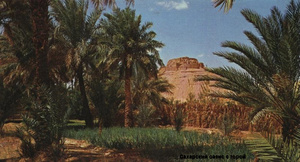 Финиковый сад и чем-то знаменитый курган-гора