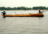 Рыбу ловят с плоскодонок, так называемых сампанов, веками использовавшихся рыбаками, но теперь уже  оборудованных небольшими моторами