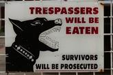 В отличие от африканских городов, в Джорджтауне не принято заматывать заборы колючей проволокой. Но охрана четвероногими друзьями иногда присутствует.