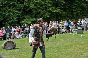На территории замка проходит шоу орлов. Специально обученные птицы и дрессировщик показывают свое мастерство.