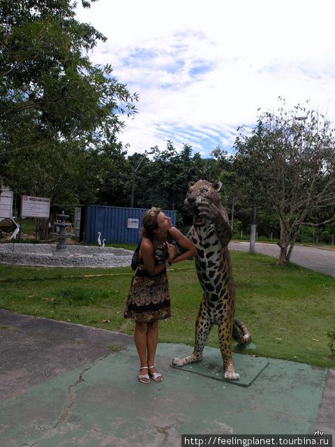 Неудачный поход в зоопарк