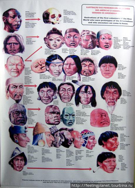 Индейские типы