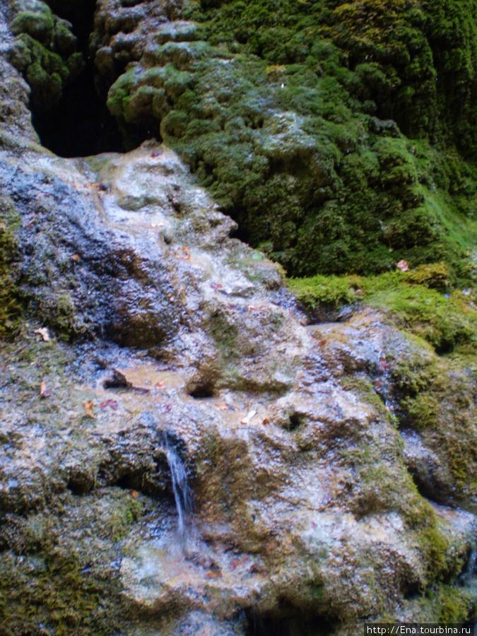 Сентябрь-2009. Поездка на Пшадские водопады.  Вот и водопадик :)