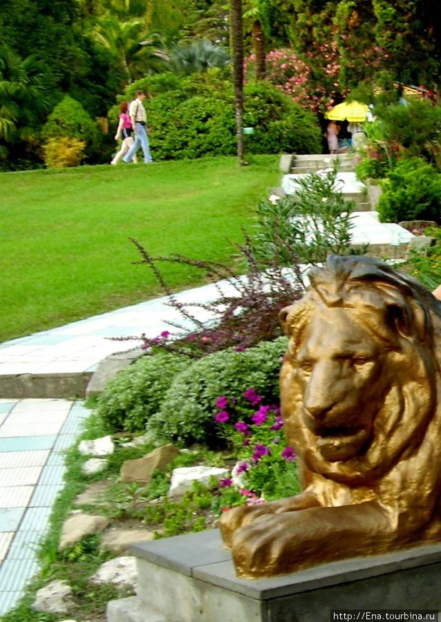 Июль 2006. Экскурсия в Сочи. В Дендрарии