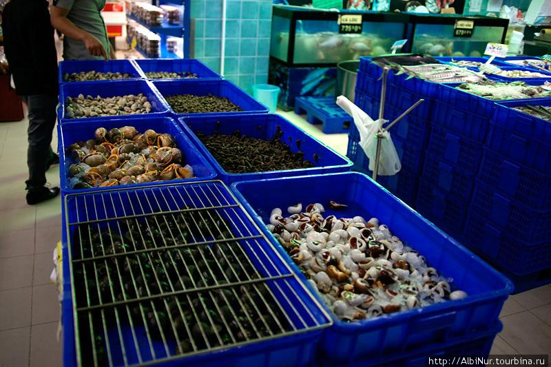 Близость моря можно увидеть и на ассортименте магазинов, можно купить десятки видов рыбы и всевозможных морепродуктов. Некоторые особо ретивые морепродукты убегают из лотков и их притаптывают решёткой.