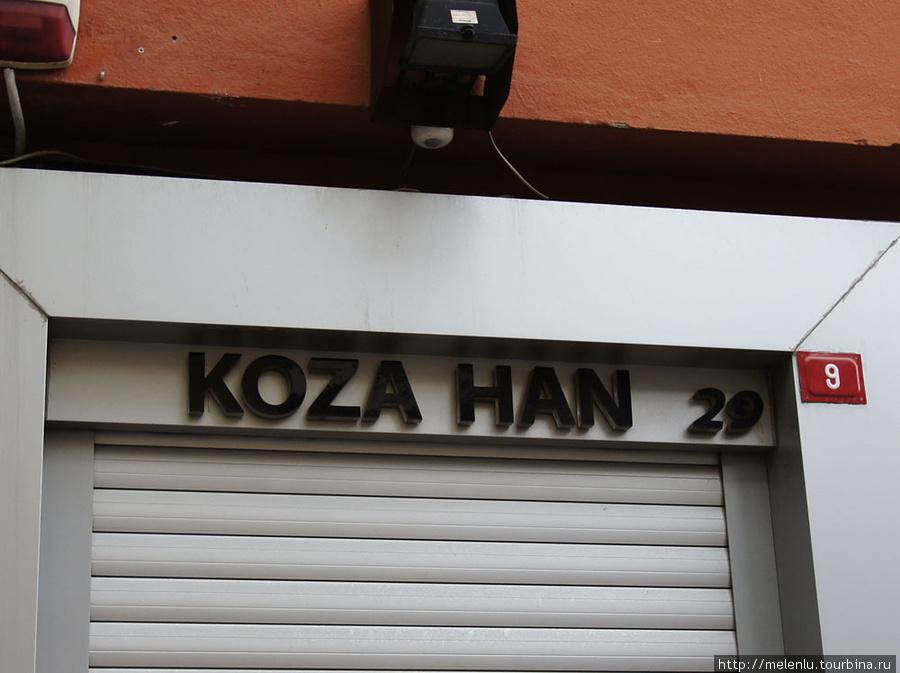 Коза хан 29