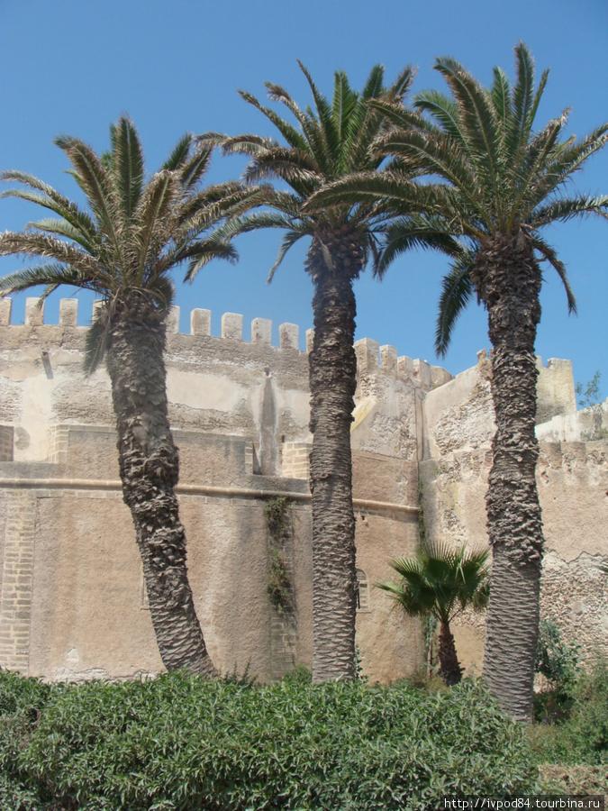 Северный бастион крепости