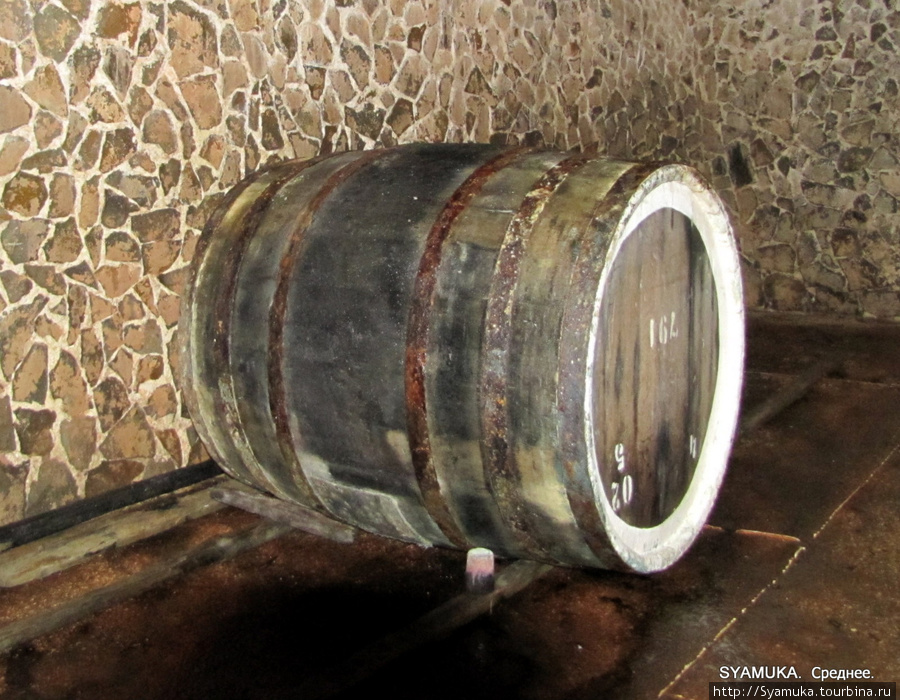 Тут зреет живое вино...