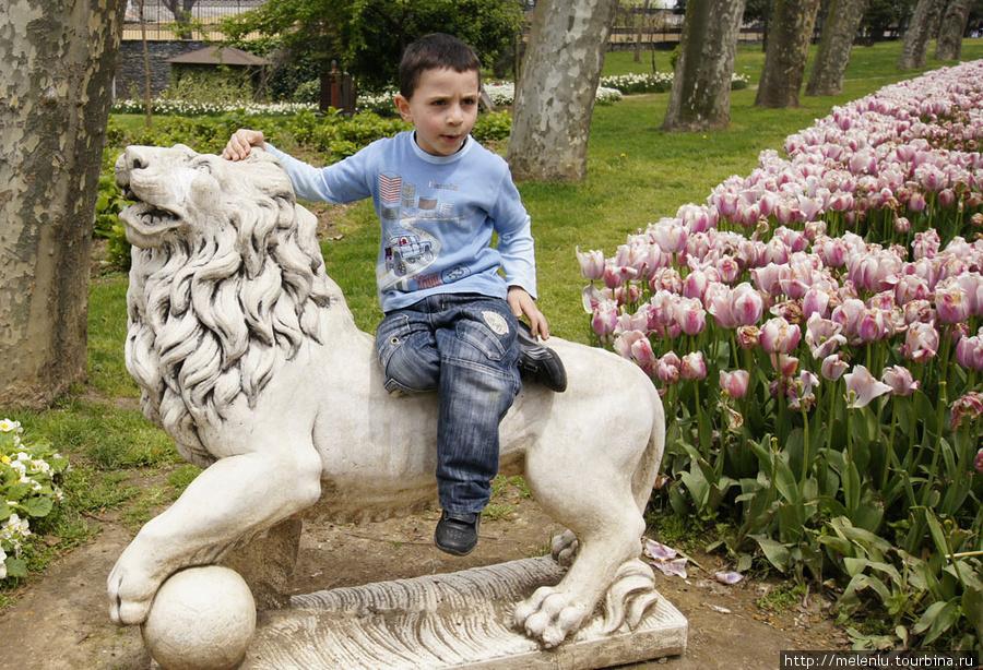 Малыш на льве в парке Топкапы