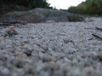 Необычное место — «Долина сказок». В Златоусте считают, что тамошняя достопримечательность — белый песок в горах и маленькие деревья. Но оказалось их больше. Песок белый есть.
