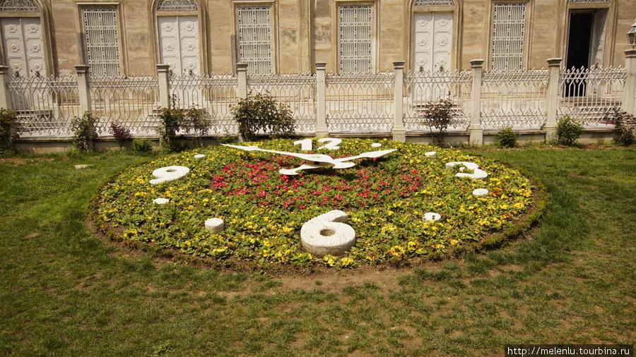 Природные часы у входа в музей часов на территории дворца