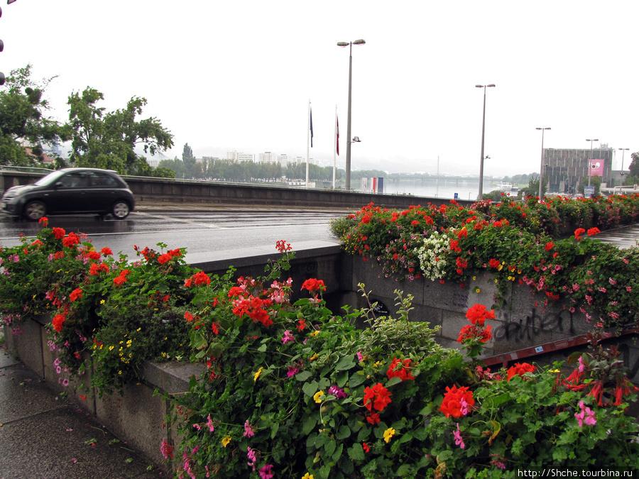 Через площадь вышли к Дунаю на мост Нибелунгов