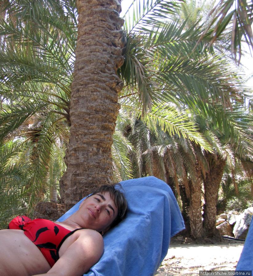 лежаки есть и под пальмами, и под зонтиками на пляже