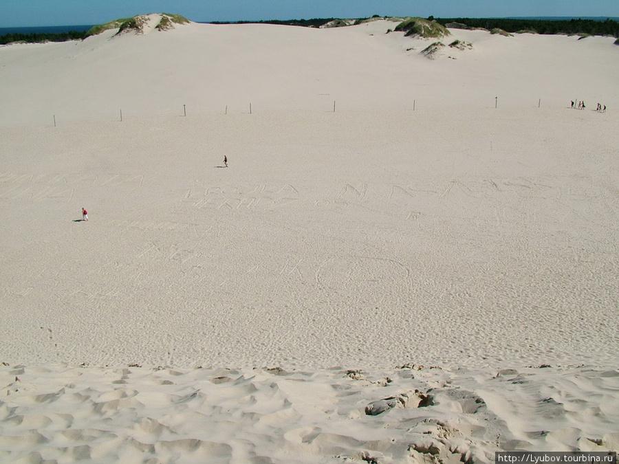 Дюны. Польша
