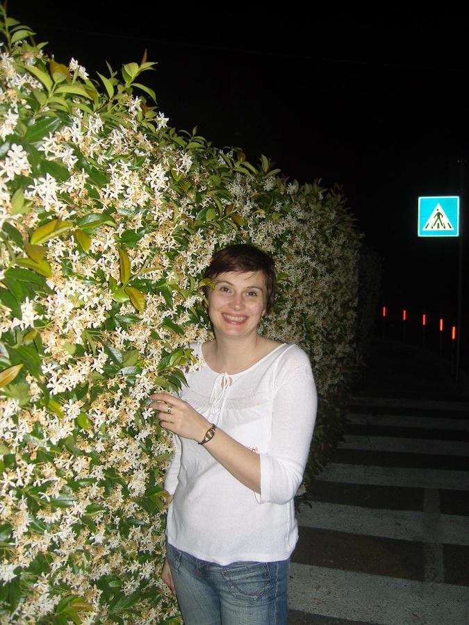 Цветы всякие