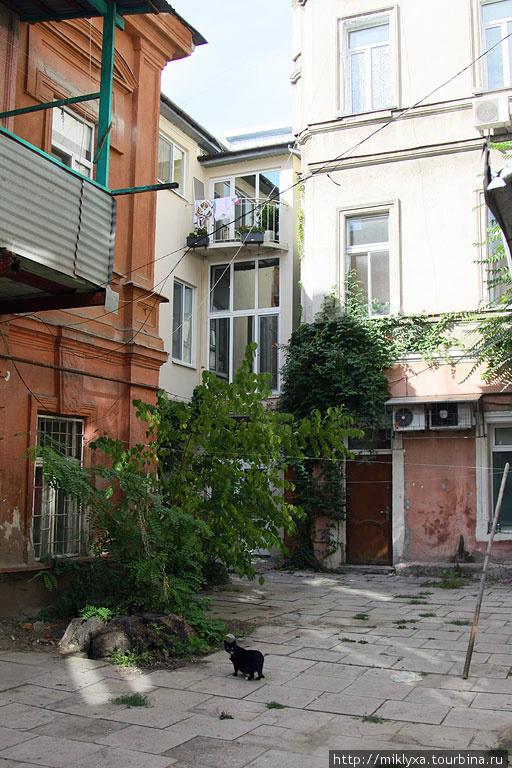 один из Одесских двориков