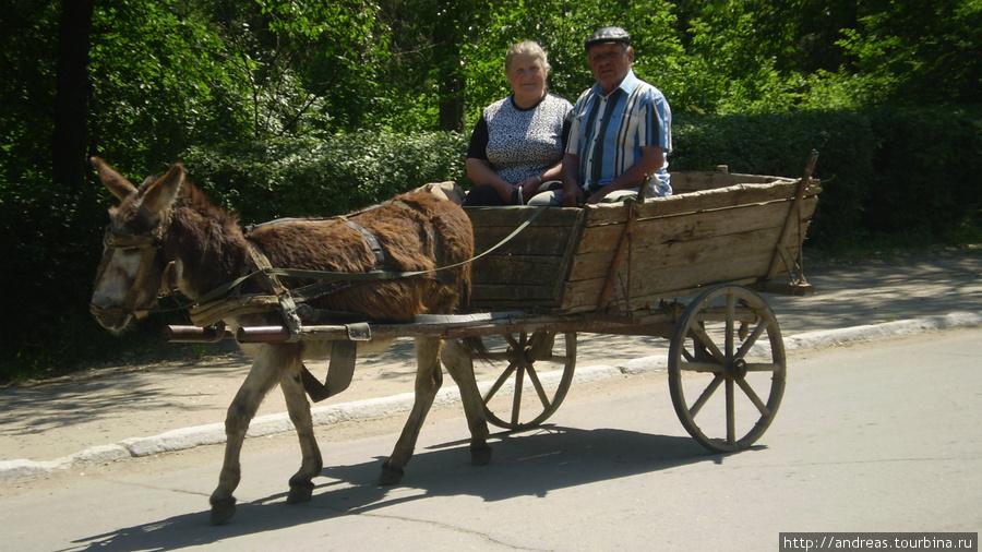 Такой транспорт часто встречается на дорогах Гагаузии