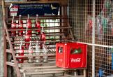 Санта-Хулиана — маленький городок, я бы даже сказал деревушка. Но, как и на всех Филиппинах, в провинции люди живут намного лучше, да и вообще, тут намного приятнее, чем в городах. Тут есть и свет, а водопровод. Заправок правда нет, поэтому бензин тут продают в двухлитровых бутылках из-под кока-колы. Почему то красный.