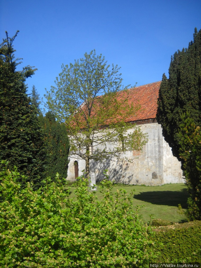 Здание церкви среди деревьев