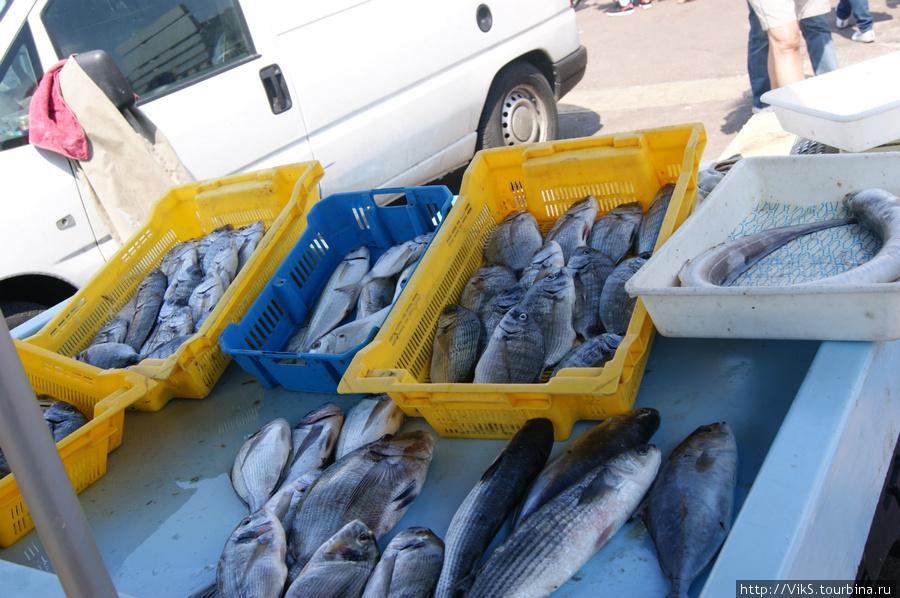 Свежий улов на рынке Марселя. Рынок работает с раннего утра по обеда.