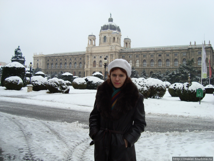 Вена. Естественно-исторический музей.