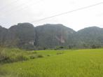 Широкая часть долины покрыта плантациями риса
