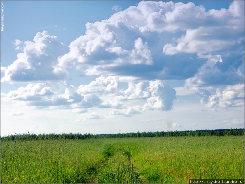 Дорога в Орехово