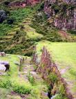 Многие дорожки на склонах уже давным  давно покрылись травой, значитздесь мало кто ходит