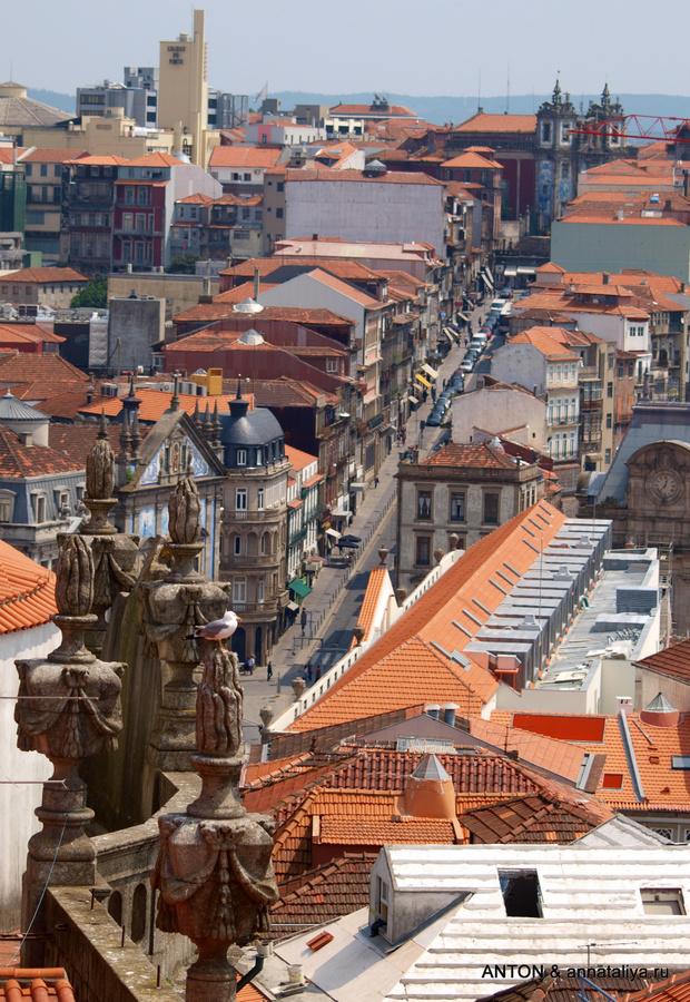 Вид на Порту с колокольни Клеригуш