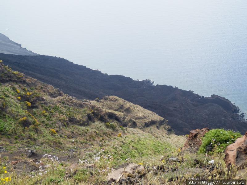 А справа от этого разгула стихии, над зловеще-черной поверхностью, без устали круажт чайки