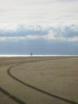 пляж Эвкалиптов.