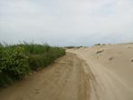 Дорога на пляж Маркизы, playa de La Marquesa.