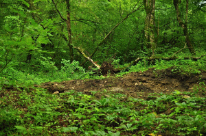 Картинки природы в краснодарском крае