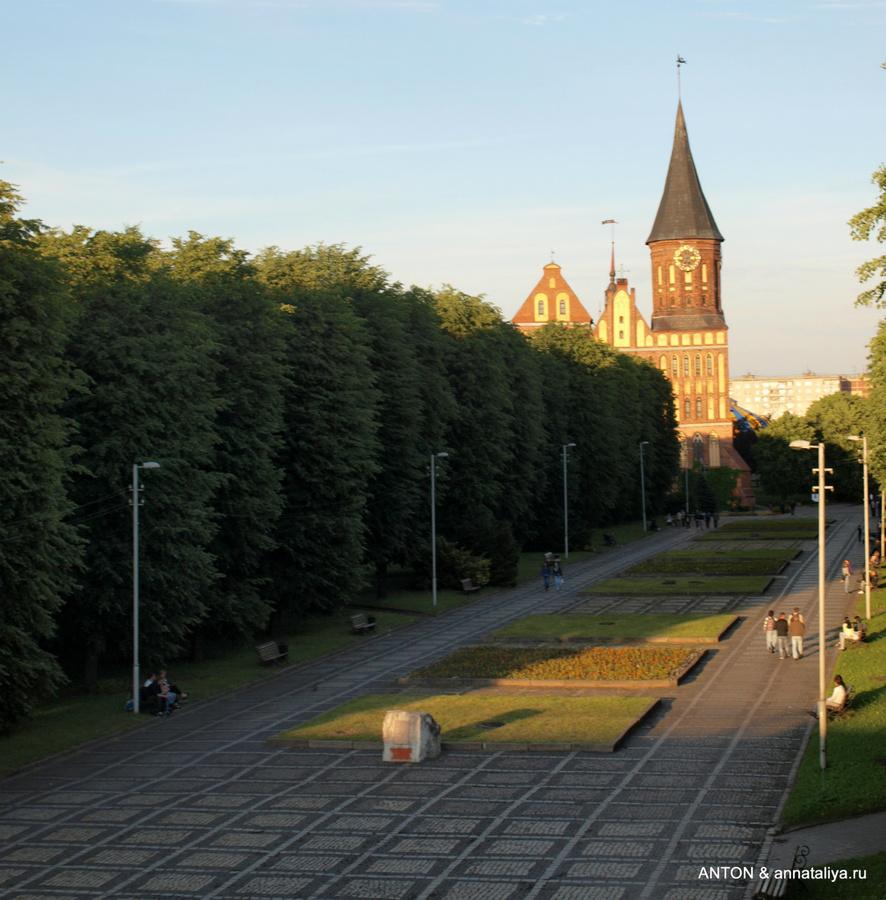 Общий вид парка на острове Канта с видом на Кафедральный собор