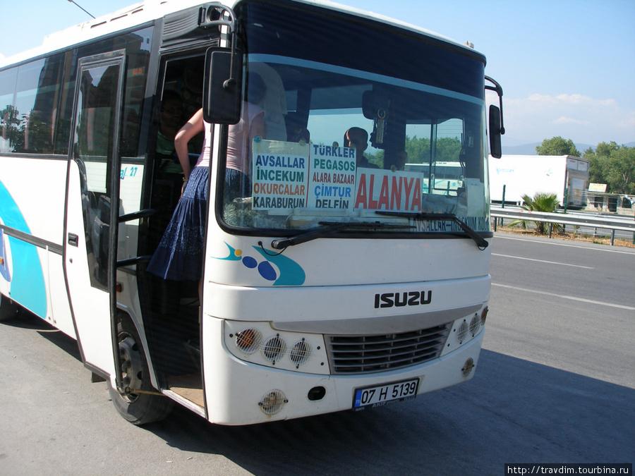 Оплата за проезд в тур.лирах,долларах или евро всё равно -у водителя при выходе.