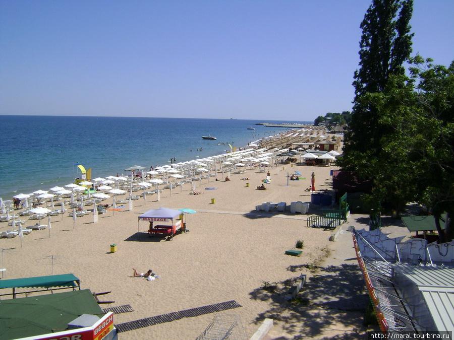 Насколько хватает глаз, пляж покрыт зонтиками и шезлонгами