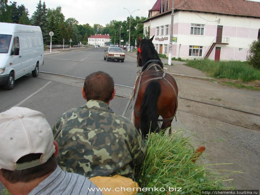 Смотреть целки украины 26 фотография