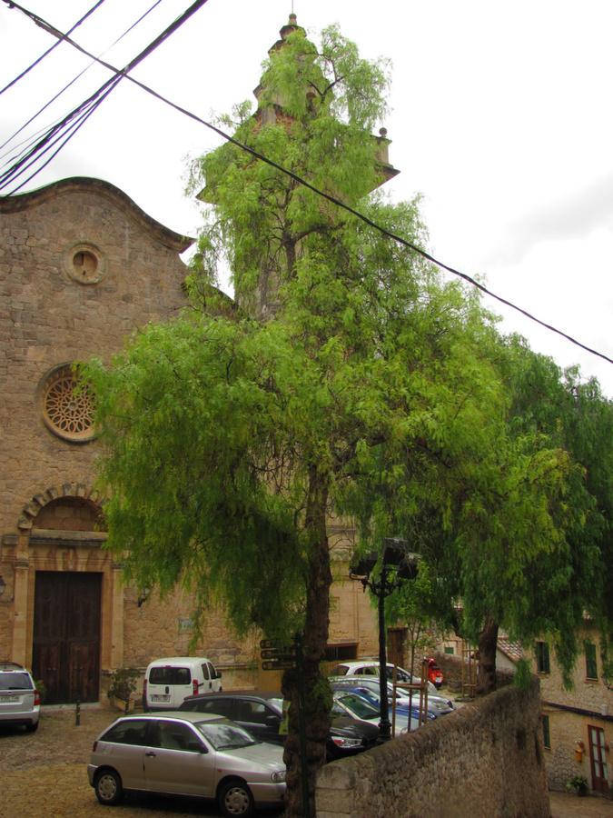 Церковь Святого Варфоломея оказалась ещё закрытой.
