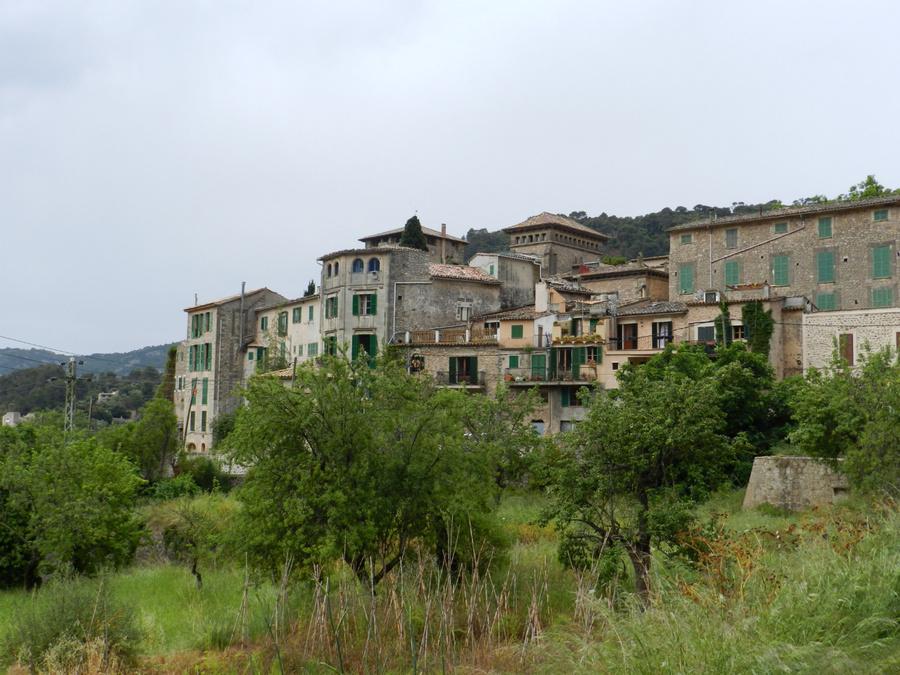 Вальдемоссу окружают оливковые и апельсиновые сады.