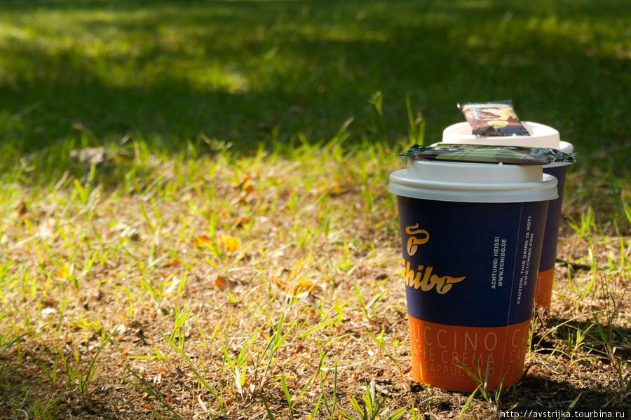 завтрак на траве в парке