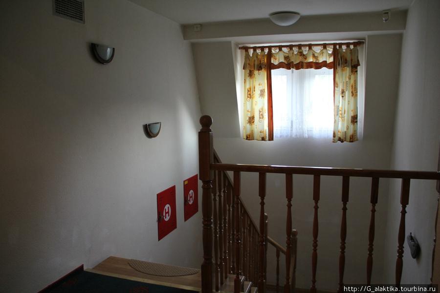 Пять этажей каменные с лифтовой кабиной, а чердачок деревянный, без лифта (т.е до 5-го этажа , а потом этаж пешком). как он приятно поскрипывал под ногами.