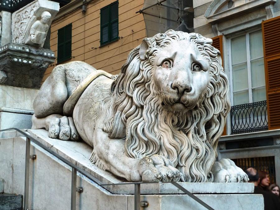 Лев у Кафедрального собора
