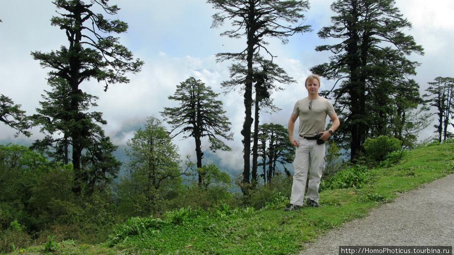 На перевале Дочула