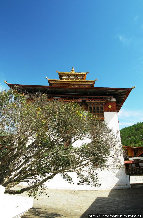 Внутри Пунакха Дзонга
