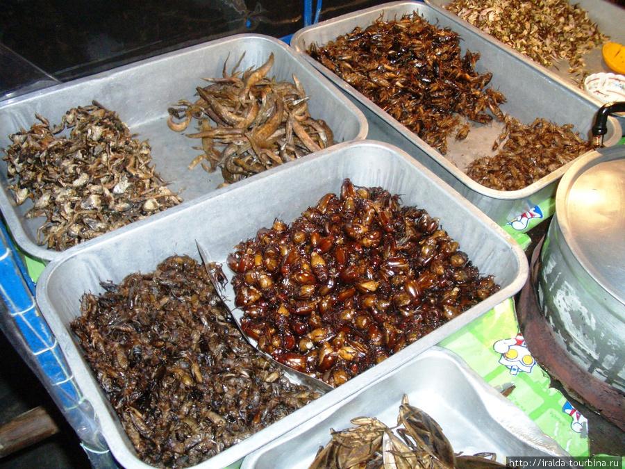 Наслышаны о тайской кулинарии в лице жареных кузнечиков, тараканов, лягушек и прочей мелюзги? Специальные лотки ждут настоящих гурманов