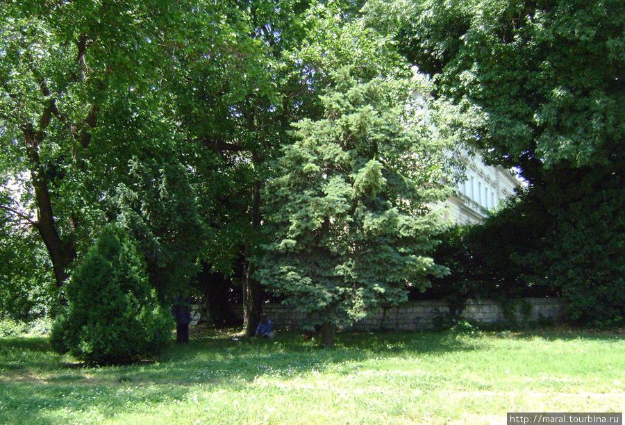 Нищие укрылись от зноя в тени деревьев возле Археологического музея