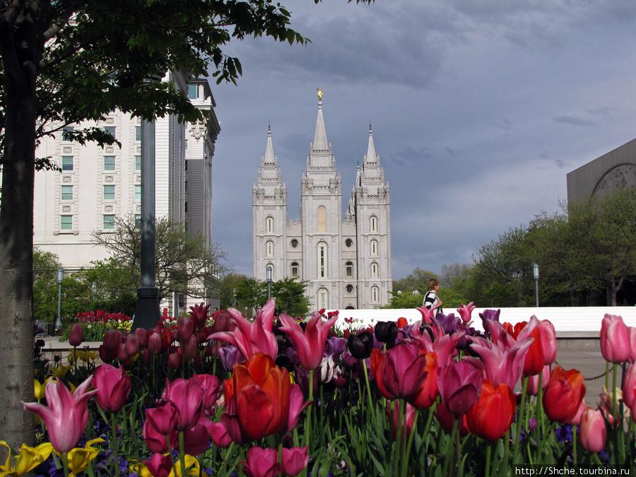 Главный храм церкви Иисуса Христа Солт-Лэйк-Сити, Соединенные Штаты Америки
