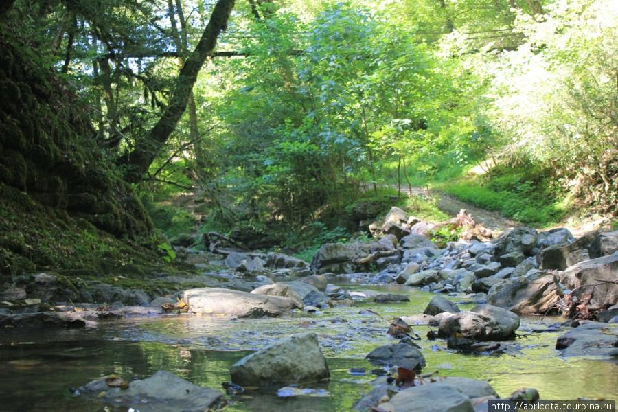 реки рядом с лоо фото фоне исторической застройки